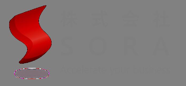SORA logo_none background true large size